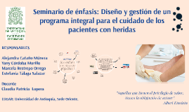 Seminario de énfasis: Diseño y gestión de un programa integral para el cuidado de los pacientes con heridas