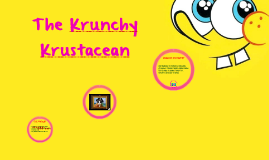 The Krunchy Krustacean