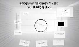 Copy of PROGRAMA DE ORDEN Y  ASEO METODOLOGIA 5S