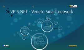 VE.S.NET english presentation