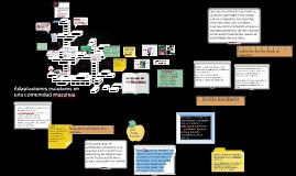 Copy of Adaptaciones escolares en una comunidad mazahua