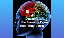 Learning and the Teenage Brain:  How We Learn