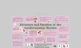 Copy of Copy of structure and function of the cardiovascular system