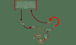 Proyecto Biomoléculas, Química 2016