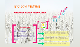 Biologia virtual