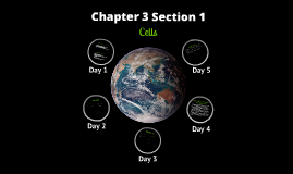 Chapter 3 Section 1 - Cells