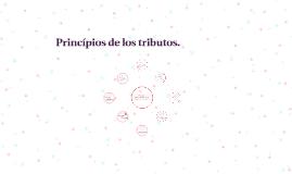 Copy of Principios constitucionales de la tributación en Colombia.