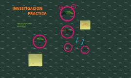 Copy of Investigacion Practica