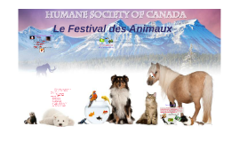 Les Festival des Animaux