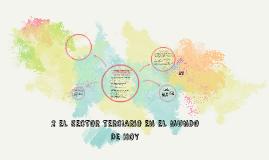 Copy of 2.1 CARACTERISTICAS DE LAS ACTIVIDADES DEL SECTOR TERCIARIO