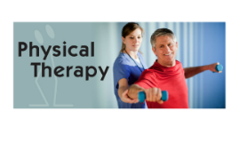 Why be a Physical Therapist