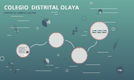 COLEGIO  DISTRITAL OLAYA