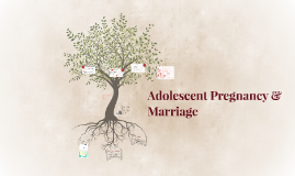 Adolescent Pregnancy & Marriage