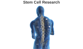 Copy of Stem Cell Research