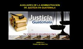 Copy of AUXILIARES DE LA ADMINISTRACIÓN DE JUSTICIA EN GUATEMALA