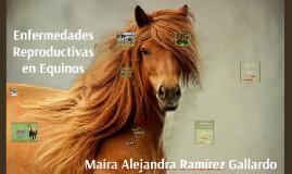 enfermedades reproductivas equinos