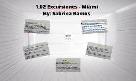 Copy of 1.02 Excursiones - Miami