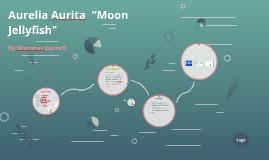 """Aurelia Aurita """"Moon Jellyfish"""""""