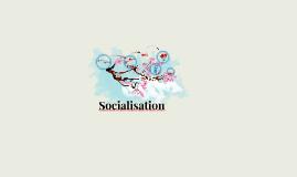 Socialisation- ungdomskulturer