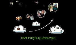 UNT COLOR GUARD 2013