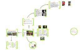 Bromeliaceae - La familia de la piña