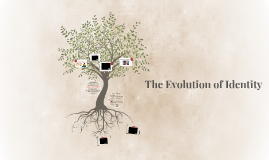 HH Evolution of Identity