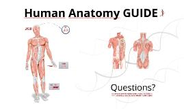 Copy of Reusable EDU Design: Human Anatomy Guide