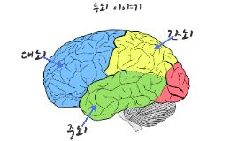 두뇌 이야기