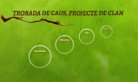 TROBADA DE CAUS, PROJECTE DE CLAN