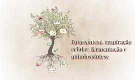 Copy of Fotossintese, respiração celular, respiração celular e