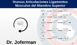 Huesos Articulaciones Ligamentos y Músculos del Miembro Superior