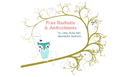 Free Radicals & Antioxidants