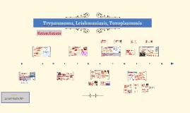 Trypanosomiasis, Leishmaniasis, Toxoplasmosis