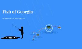 Fish of Georgia