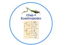 Chap.4 Euarthropodes