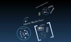 Bluefin Tuna Mgmt