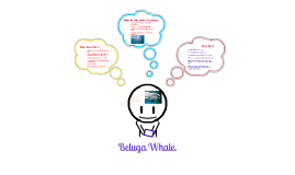 Copy of Beluga Whale