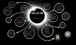 Copy of Copy of Aves sin nido