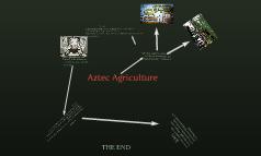 Aztec Agriculture