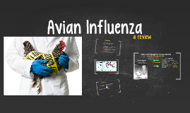 Public Health Management of Avian Influenza