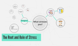 The Root and Role of Stress