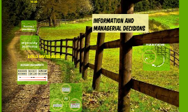 INformation and managerial decisions