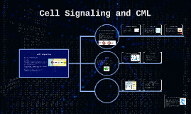 Cell Signaling and CML