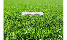 Stellen Sie sich vor Ihr Rasenmäher geht kaputt...