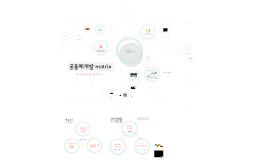 복사본 - 공동체개발 matrix