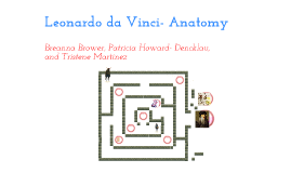 Copy of Leonardo da Vinci anatomy