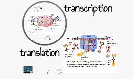 Bio - Protein Synthesis