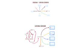 BeDream + Leitura Express