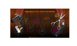 Highlights of U.S. Hair Care Market