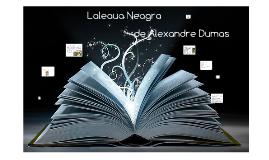 Copy of Laleaua Neagra de Alexandre Dumas
